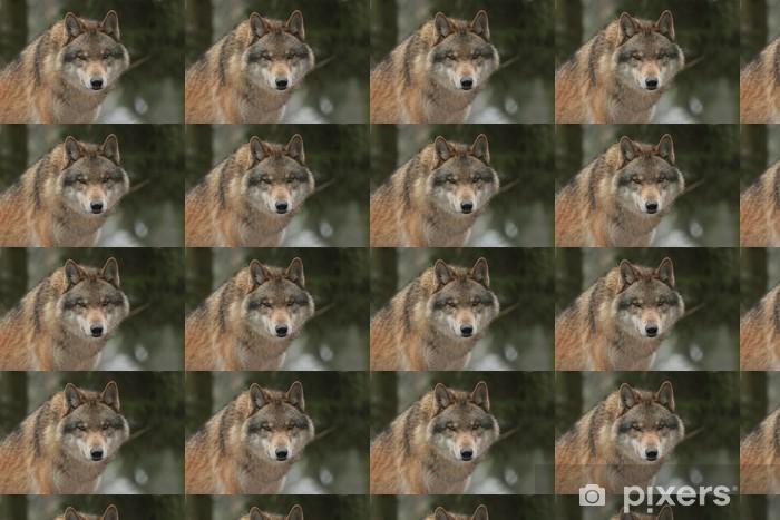 Papier peint à motifs vinyle Wolf - Thèmes