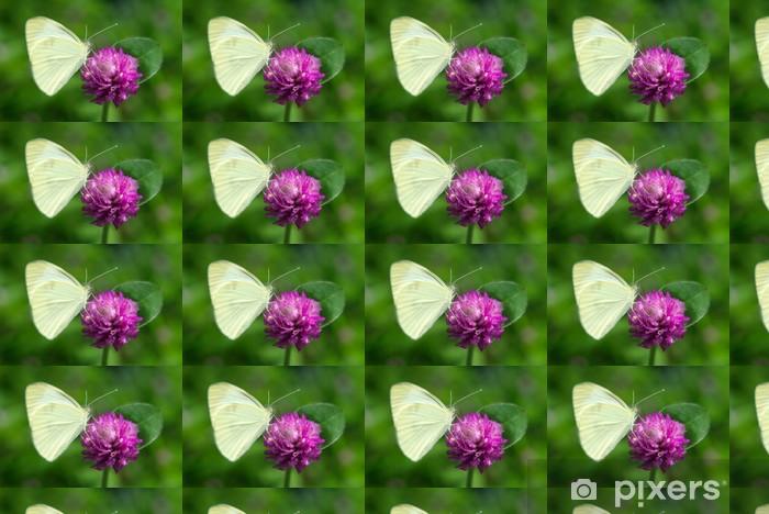 Papier peint vinyle sur mesure Papillon sur une fleur pourpre - Thèmes