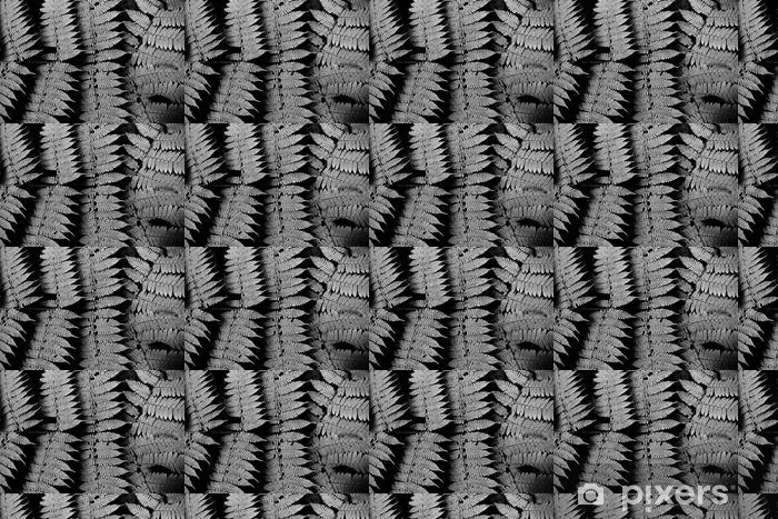 Tapete Schwarz Weiß Farn Muster Pixers Wir Leben Um Zu Verändern