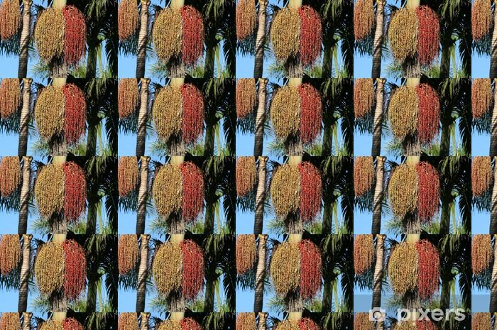 Tapete Bambus Palme Pixers Wir Leben Um Zu Verandern