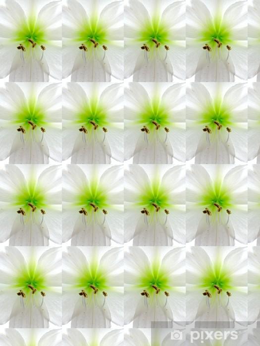 Papier peint vinyle sur mesure Amarillis - Fleurs