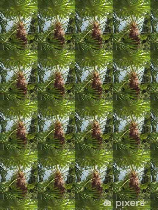 Vinyltapete nach Maß Palme - Tessin - Europa