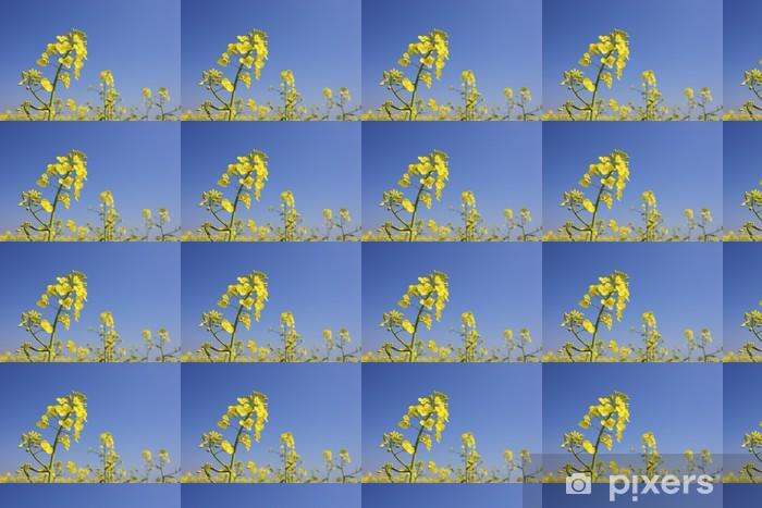 Vinylová tapeta na míru Čerstvé květy řepky na jaře s jasně modré oblohy - Roční období