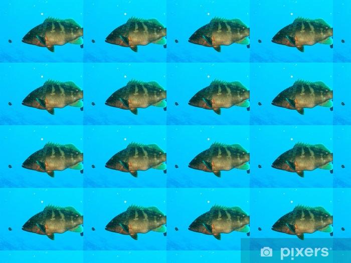 Papier peint vinyle sur mesure Gros poissons - Mammifères