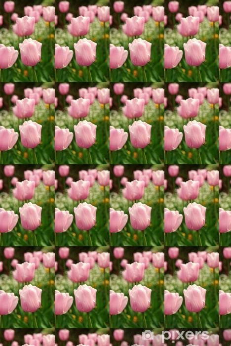 Tapeta na wymiar winylowa Tulipan - Kwiaty