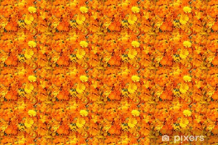 Vinyltapete nach Maß Große Anzahl der orange Calendula - Blumen