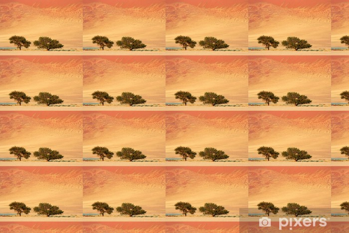 Landscape With African Acacia Trees Sossusvlei Namibia Wallpaper Vinyl Custom Made