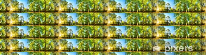 Papier Peint Vinyle Sur Mesure Magnifique Paysage De Printemps Panoramique  Avec Le Soleil Qui Illumine Magnifiquement