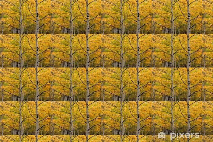 aspen grove Vinyl custom-made wallpaper - Forests