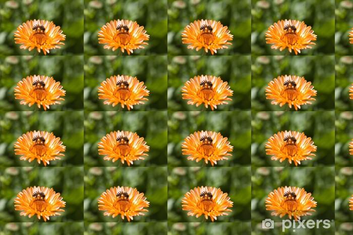 Vinylová tapeta na míru Slunečnice a včelí - Roční období