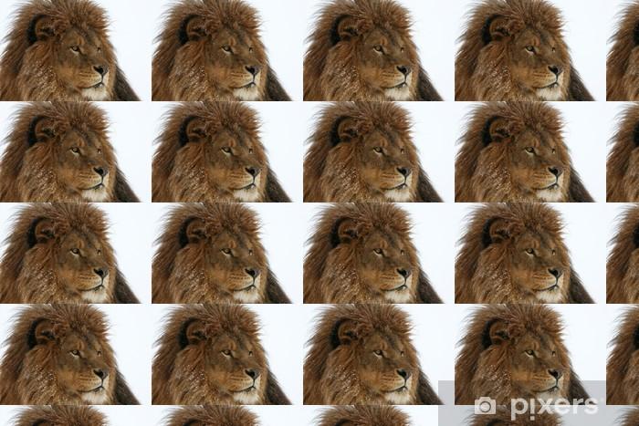Papier peint vinyle sur mesure Homme disparu à l'état sauvage Lion de Barbarie dans la neige - Thèmes