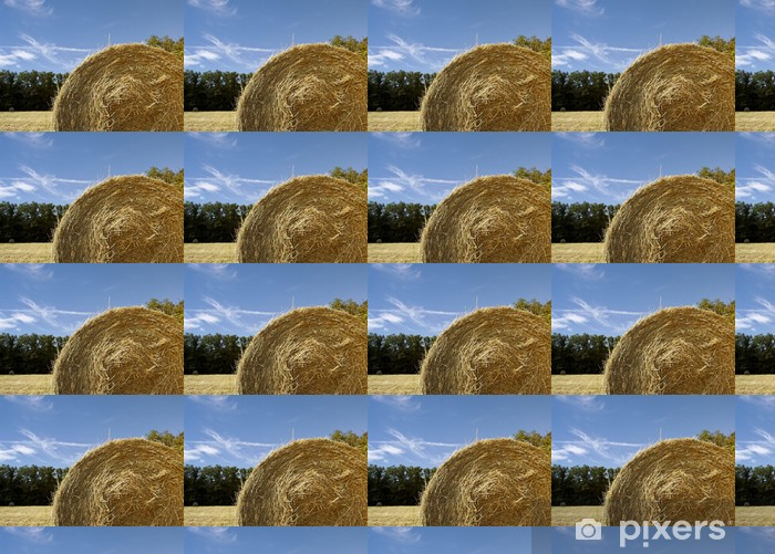 hay bale and sky Vinyl custom-made wallpaper - Agriculture
