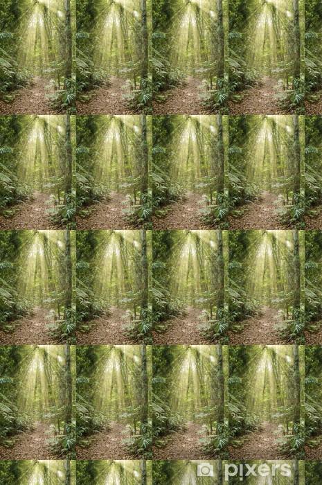 Papier peint vinyle sur mesure Grande image de la beauté de la forêt tropicale avec des rayons de lumière - Arbres