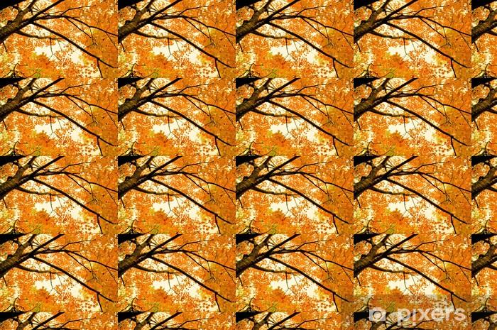 Papier peint vinyle sur mesure Virginie automne - Saisons