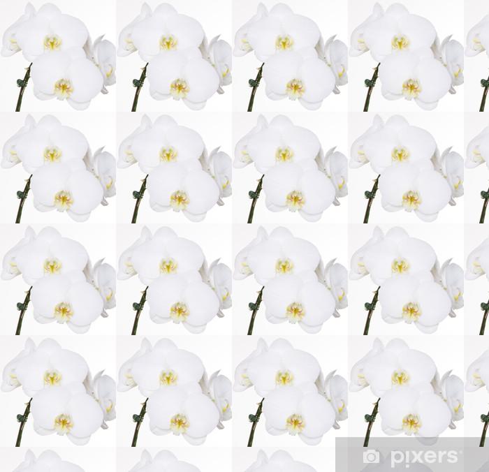 Papier peint vinyle sur mesure Orchidées blanches sur fond blanc - Fleurs