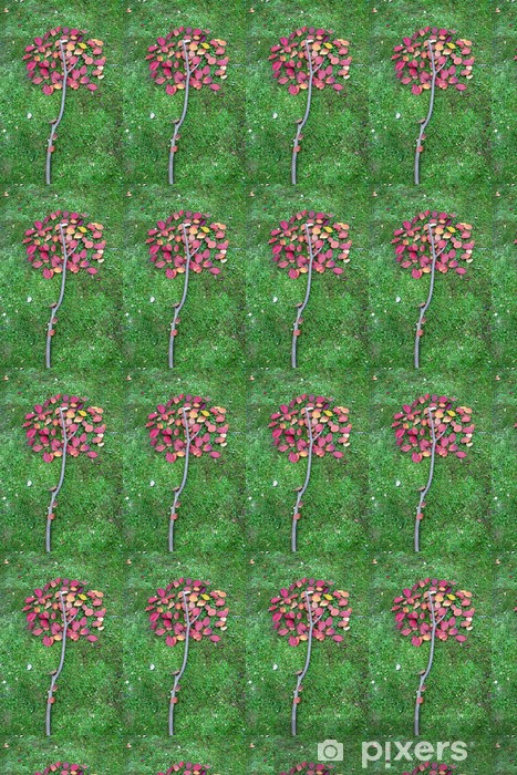 Vinyl behang, op maat gemaakt Herfst bladeren in een stilleven - Seizoenen