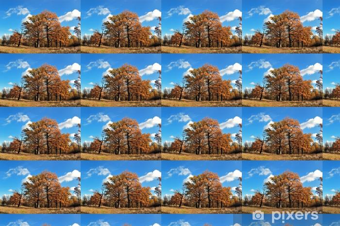 Papier peint vinyle sur mesure Arbre automne - Ciel