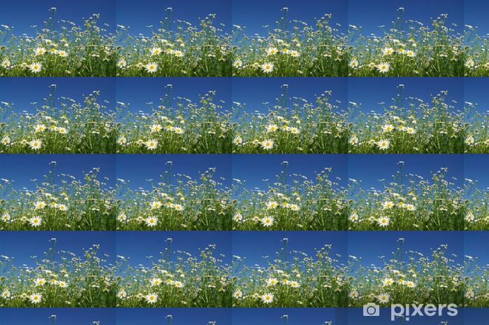 Vinyl behang, op maat gemaakt Chamomile - Bloemen