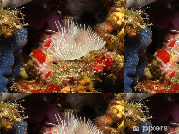 espirografo Vinyl Wallpaper - Aquatic and Marine Life