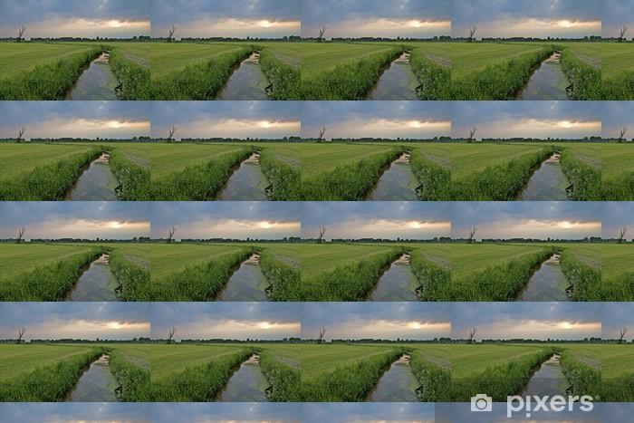 Papier peint à motifs vinyle Fossé dans le paysage hollandais sous un ciel nuageux en soirée - Campagne