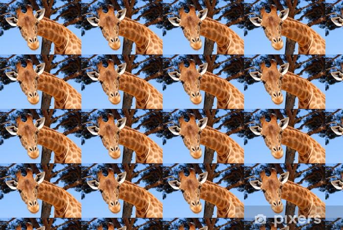 Papier peint vinyle sur mesure Tête de girafe - Thèmes