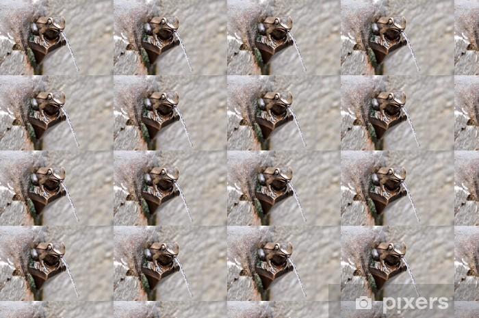 Papier peint vinyle sur mesure La grenouille qui crache - Paysages urbains