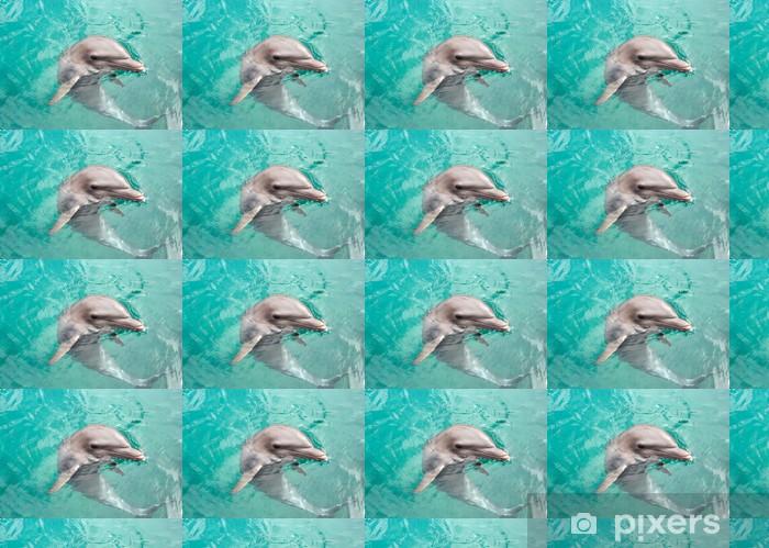 Tapeta na wymiar winylowa Smiling Dolphin - Delfiny