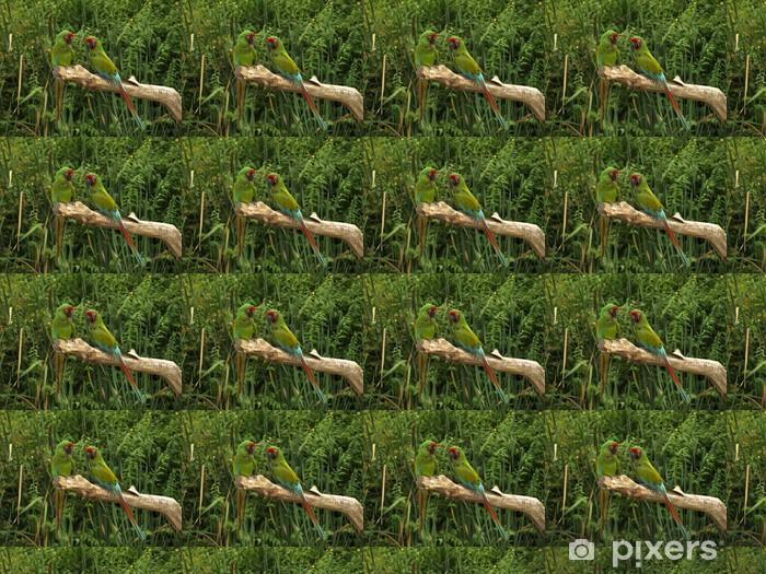 Tapeta na wymiar winylowa Papugi - Abstrakcja