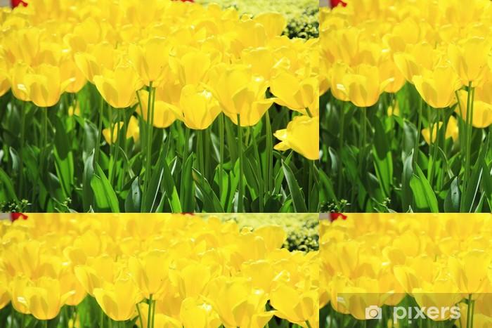 Vinil Duvar Kağıdı チ ュ ー リ ッ プ, 黄色 -