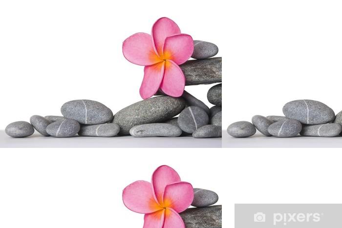 Vinylová Tapeta Kameny s květinou - Květiny