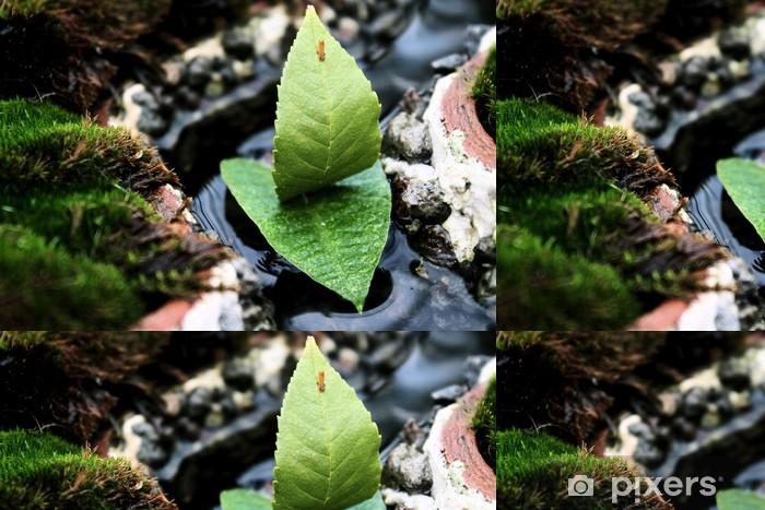 Vinyltapete Fragile segeln - Pflanzen