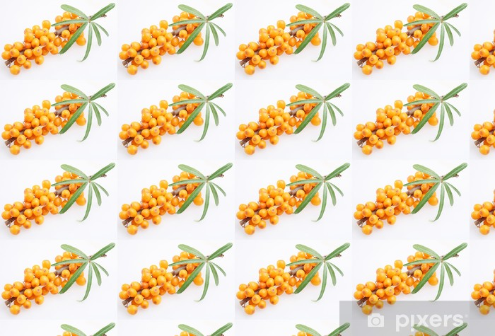 Sea buckthorn on a white background Vinyl custom-made wallpaper - Fruit