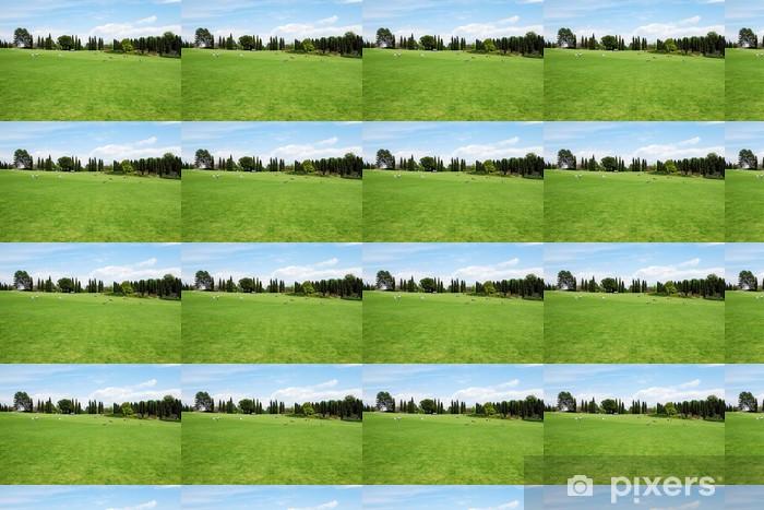 Tapete Prato Verde E Cielo Azzurro Pixers Wir Leben Um Zu