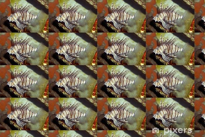 Vinyltapete nach Maß Seewasserfisch 003 - Unterwasserwelt