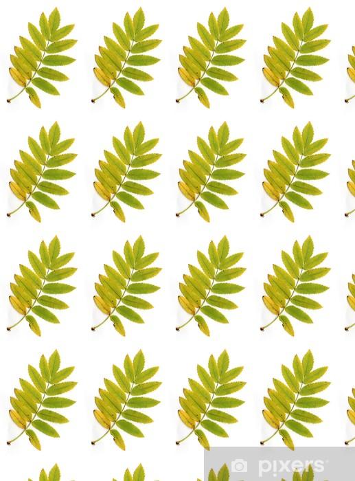 Papier peint vinyle sur mesure Autumn Leaves - Saisons