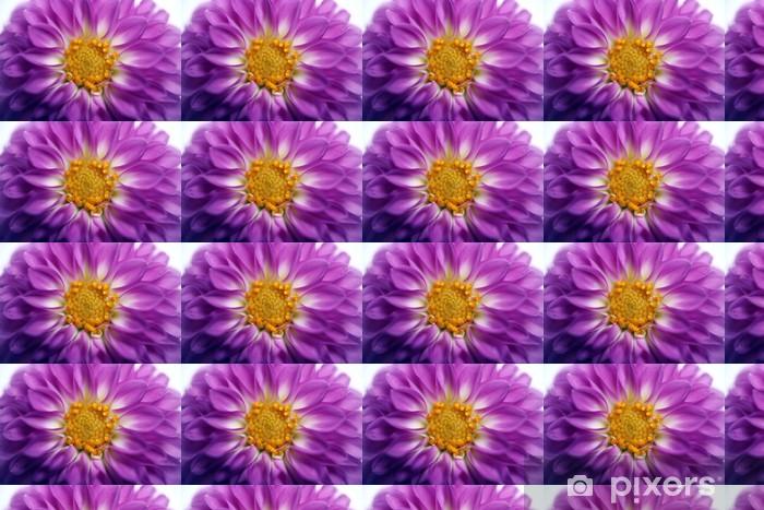 Papier peint vinyle sur mesure Dahlia pourpre - Fleurs