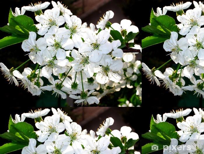 Vinylová Tapeta Banda bílých květů - Roční období