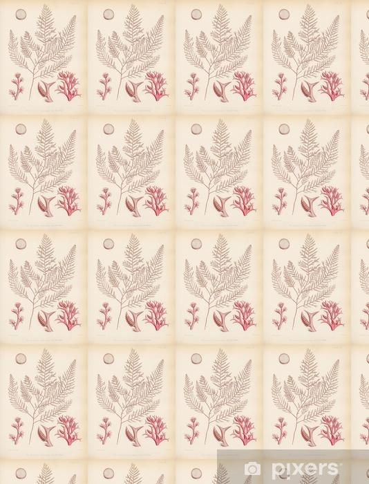 Papier peint vinyle sur mesure Rhodomela concinna - Plantes et fleurs