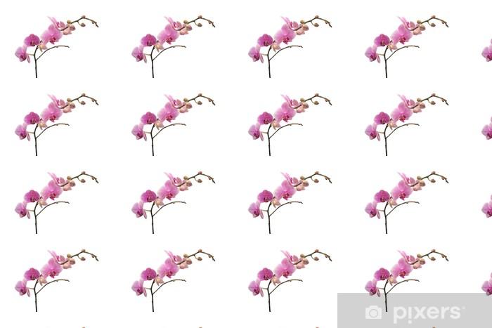 Papier peint vinyle sur mesure Branche orchidée - Fleurs