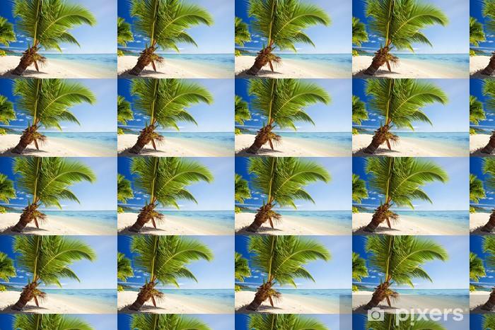 Papier peint vinyle sur mesure Petit palmier qui pèse sur lagon magnifique - Saisons