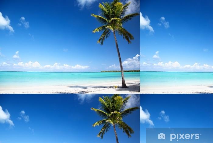 Vinylová Tapeta Oceán a palm - Voda