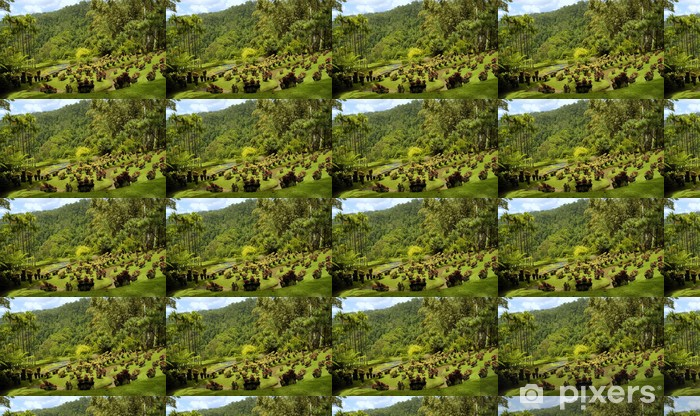 Vinyltapete nach Maß Jardin de Balata - Öffentliche Gebäude