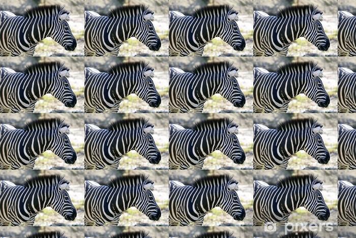 Tapeta na wymiar winylowa Piękne african Zebra outdoor - Tematy