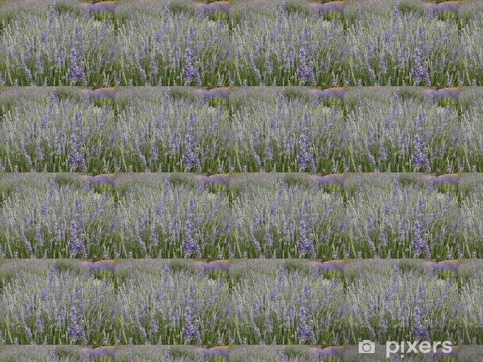 Papier peint vinyle sur mesure Un champ de lavande - Fleurs
