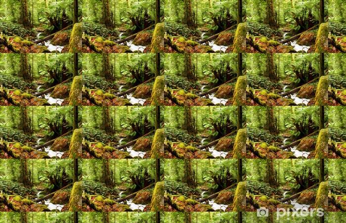 Papier peint vinyle sur mesure Forêt ancienne - Thèmes