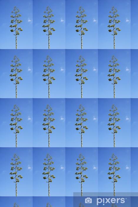 Tapeta na wymiar winylowa Agave parrasana - Kwiaty