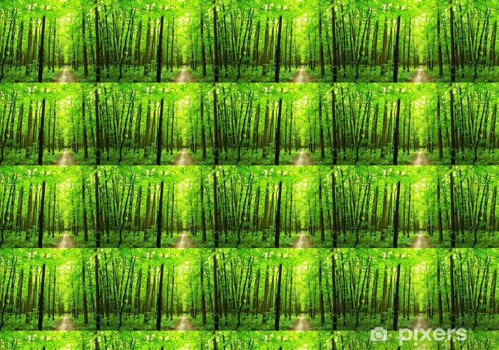 Papier peint vinyle sur mesure Chemin forestier - Merveilles naturelles