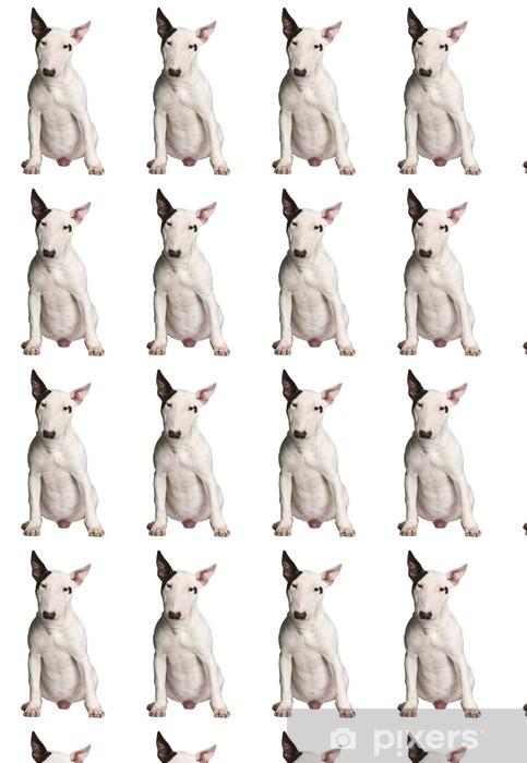 Vinyl behang, op maat gemaakt Bull terrier, 9 maanden oud, zitten in de voorkant van de witte achtergrond - Zoogdieren