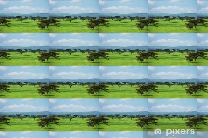 Vinyl behang, op maat gemaakt Afrikaanse landschappen - Afrika