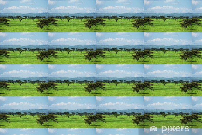 Vinyltapete nach Maß African landscapes - Afrika